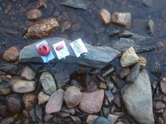 Passive SW Radio Installation, Dumphy's Pond, 2016