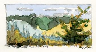 Mt. Kobau, Chopaka Trail Looking South, July 2017
